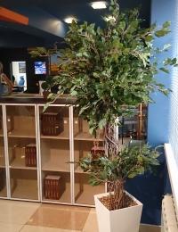 Искусственные деревья, растения, цветы, трава оптом и в розницу - каталог с ценами и фото