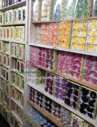 Стабилизированные цветы, растения, мох оптом и в розницу по России - каталог с ценами и фото