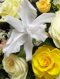 Стабилизированные цветы - стабилизированная орхидея