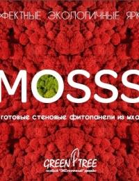 Готовые фитопанели MOSSS собственного производства!