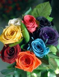 Стабилизированные цветы - стабилизированная роза