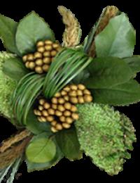 Стабилизированные растения - стабилизированные травы и соцветия