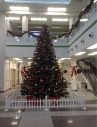 Новогоднее оформление на Заказ | Ёлки, гирлянды, корпоративные подарки от GREEN TREE