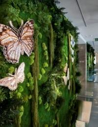 Вертикальное озеленение Фитостена | Фитомодуль