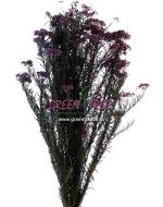 РИСОВЫЙ ЦВЕТОК темно-фиолетовый