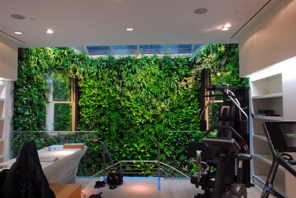 Своими руками зеленые стены из растений 27